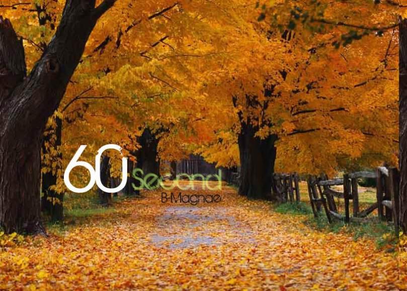 60-second