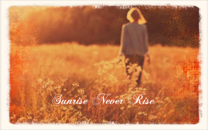 sunrise-never-rise-cover2
