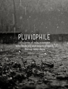 Pluviophile- a Lover of Rain; someone who finds joy and peace of mind during rainy days