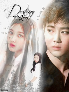 destiny of love 2